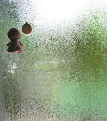 湿漉漉,湿漉漉—浅析回南天