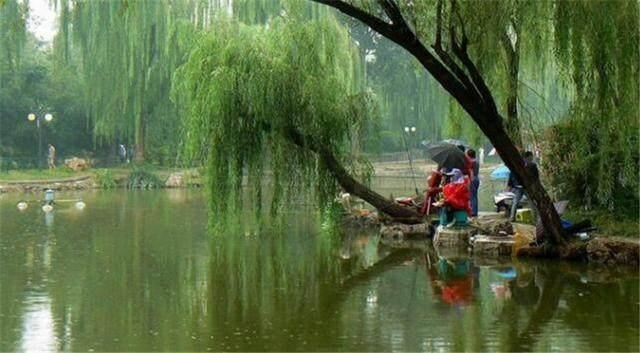 在梅雨季钓鱼的忌讳与技巧