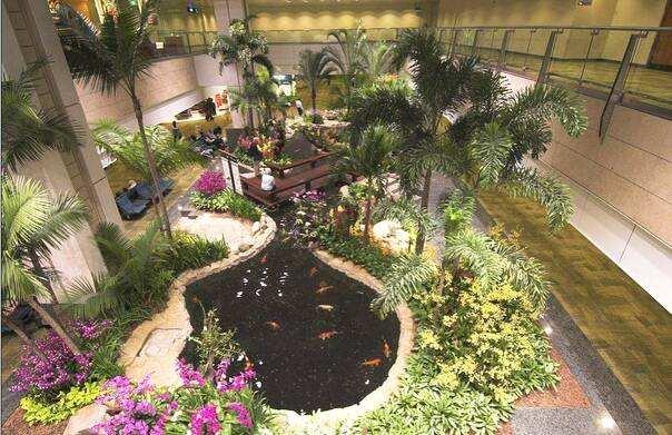 室内花园,需要先做好防潮除湿
